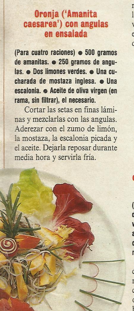 RECETAS DE CAESAREA