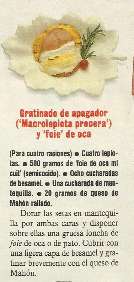 RECETAS DE GALLIPIERNOS
