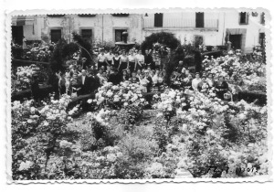 Grupo entre flores 2